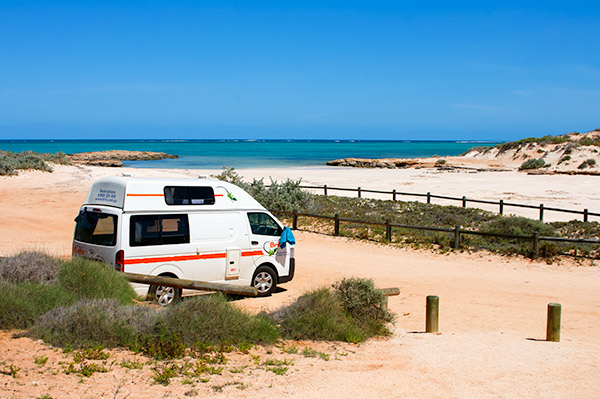About Going the Whole Hogg - Pilgramunna Camp, Ningaloo Reef, Australia