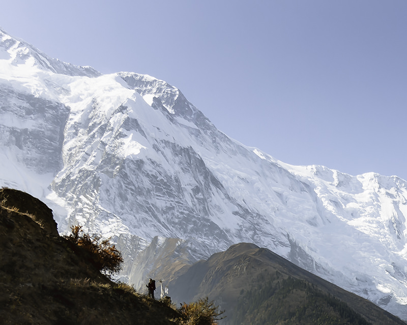 Snow covered mountains of the Annapurnas, a trekker hiking the Annapurna Circuit trail in the foreground