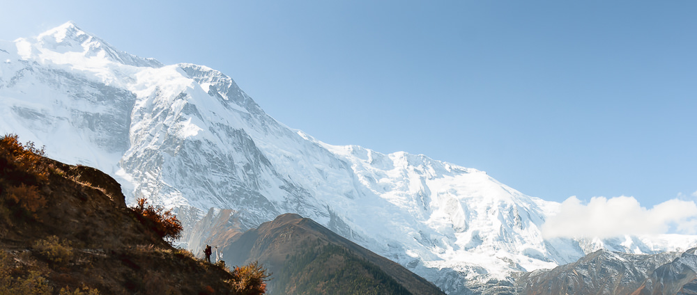 A panorama of the snow covered Annapurna Massif, a trekker hiking the Annapurna Circuit trail in the foreground