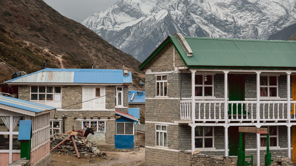 Guesthouses clustered around the trail at Yak Kharka, with snowy mountains in the background