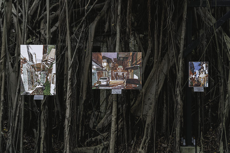 An exhibition of artwork among the vines of the banyan trees in the Anping Tree House in Tainan