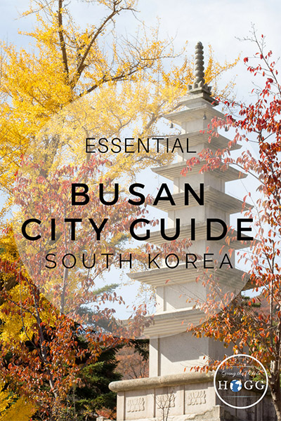 The Essential Busan City Guide, South Korea. What to see, do, eat & drink. Where to stay, how to get around, plus an interactive map to help you find it all. Beaches, hiking, shopping, quirky sights, temples, amazing seafood and buzzing nightlife - find out the best of Busan travel | South Korea Travel | Korea Travel | Backpacking Korea | Korea Beach | Korean Food | Hiking Korea | Korean Temples | East Asia Travel | Travel Tips | Travel Guides | City Guides #SouthKorea #TravelTips #Busan #Asia