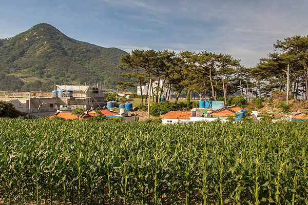 Bijindo Island Village Life, Korea