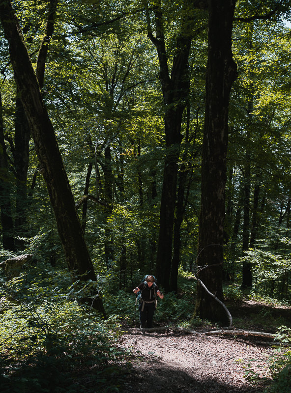 A hiker climbs the forest trail on Day 1 of the Black Rock Lake trek in Lagodekhi National Park, Georgia