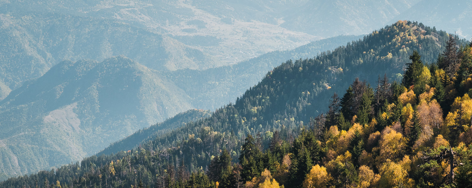 Autumn colours showing on the forested slopes below the Panorama Trail in Borjomi-Kharagauli National Park