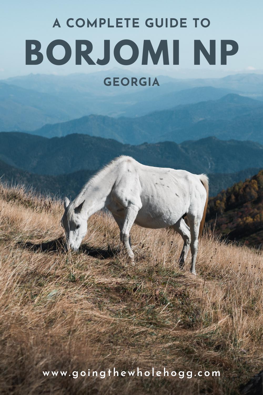 A Guide to Borjomi-Kharagauli National Park