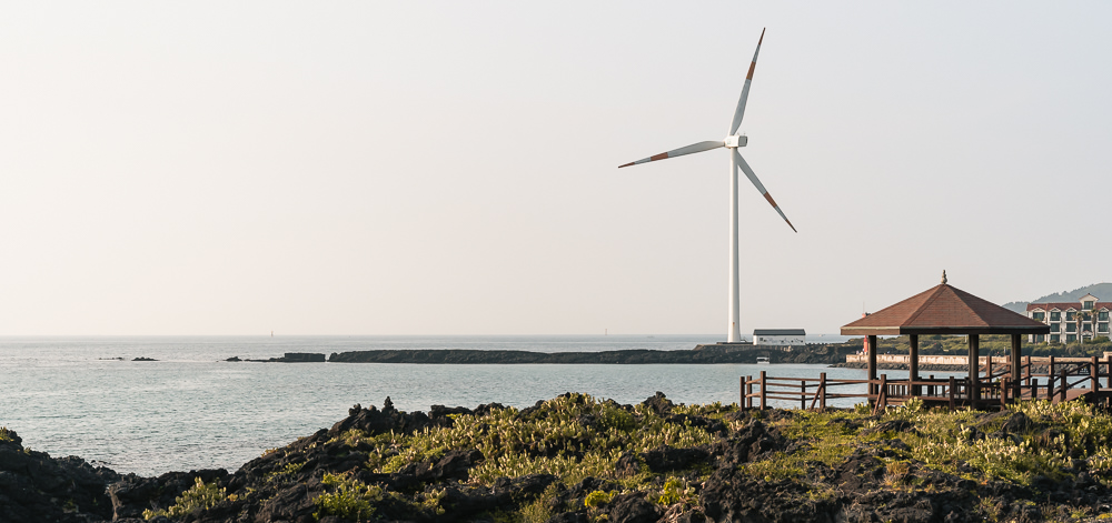 Cacti clinging to the coast beneath a giant wind turbine at Wolryeong-ri on Jeju