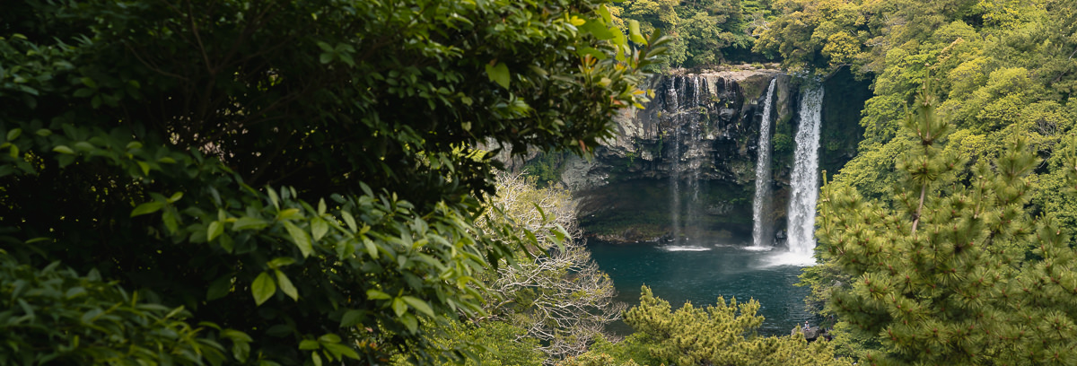 A view of Cheonjiyeon Waterfall through the lush green trees from Jeju Olle Trail Route 7