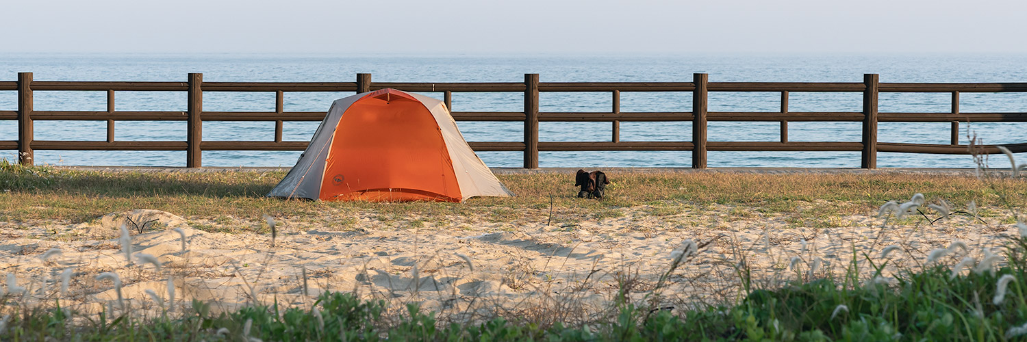 A tent pitched in the grass behind Gwakji Beach on Jeju Island.