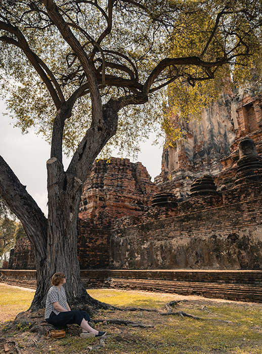 A person sits below a tall tree in the grounds of Wat Phra Ram in Ayutthaya, Thailand