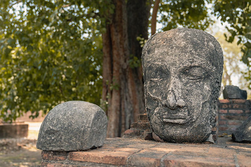 A large stone Buddha head sitting on the wall in front of a tree at Wat Ratchaburana in Ayuttahya, Thailand.