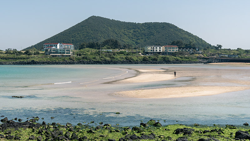 The curved golden sand of Hado Beach, one of the best beaches on jeju Island. Jimibong, a Jeju oreum, rises behind.