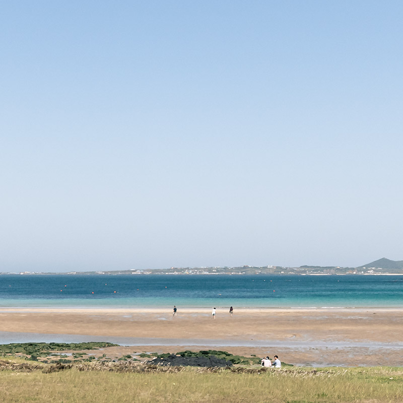 The green grass, golden sand and blue sea of Hado beach on Jeju Island. Tiny figures, seen from a distance, walk on one of the best beaches on jeju island.