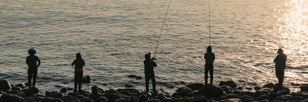 A row of fishermen line the shore, fishing on the rocks near Wolpyeong Port at sunset