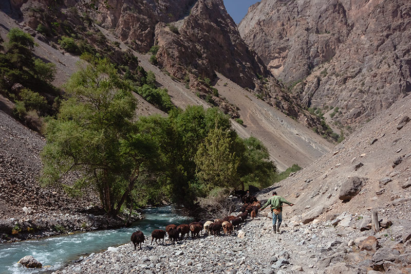 Independent Trekking In The Fann Mountains, Tajikistan: Haft Kul to Alauddin - Following the goatherder, right before we missed the bridge