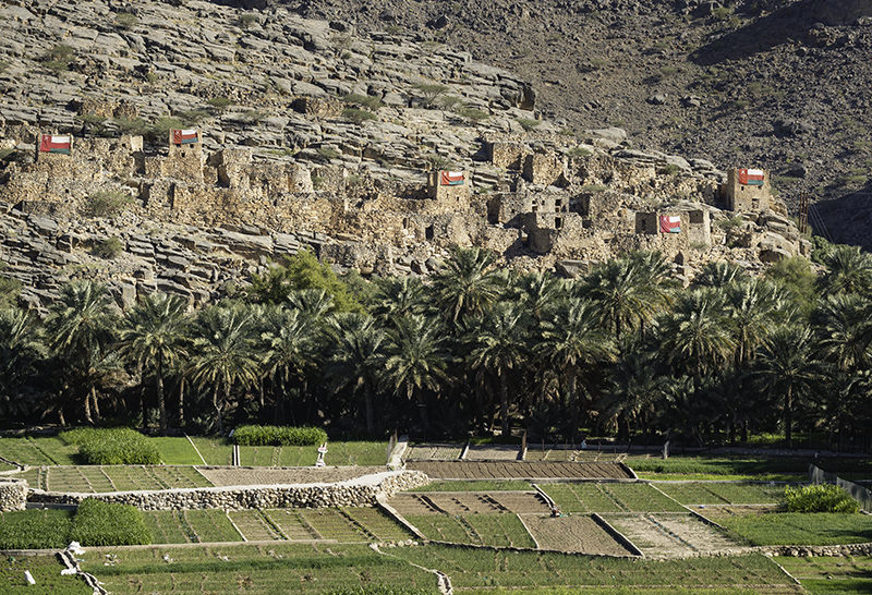 Abandoned houses in the village of Ghul, built into the mountainside with date palms and green fields below