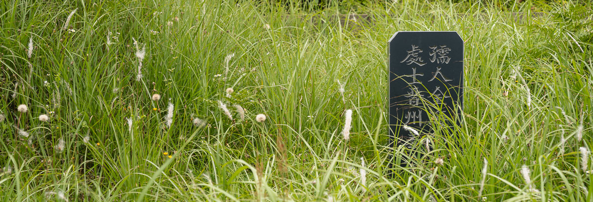 Grave stone in long green grass on Moseul-bong on Jeju Olle Trail Route 11