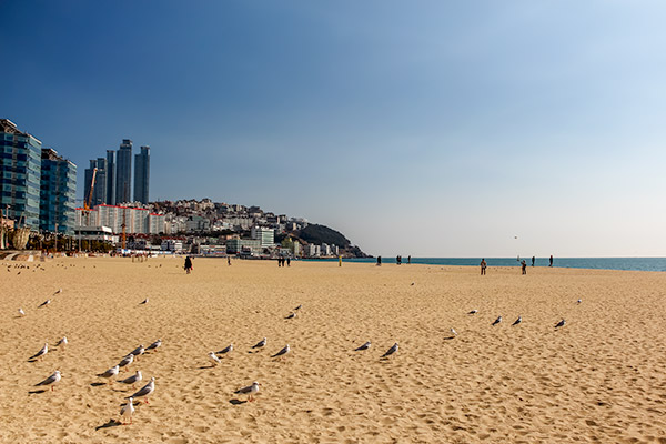 Busan City Guide: A quiet day on Haeundae Beach