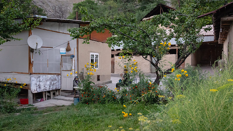 Relaxing in the garden of a homestay surrounded by green grass and yellow flowers in Zimtut, Tajikistan