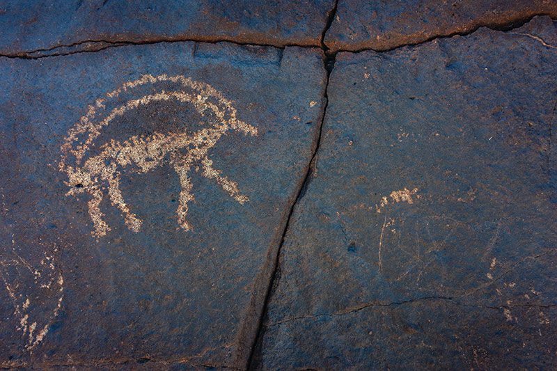 7 Days In The Gobi: The ancient Khavtsgait petroglyphs in the Gobi Desert Mongolia