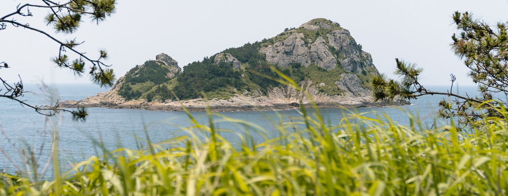 One of the many uninhabited islands of Chuja-do, seen through the long grass and tree branches