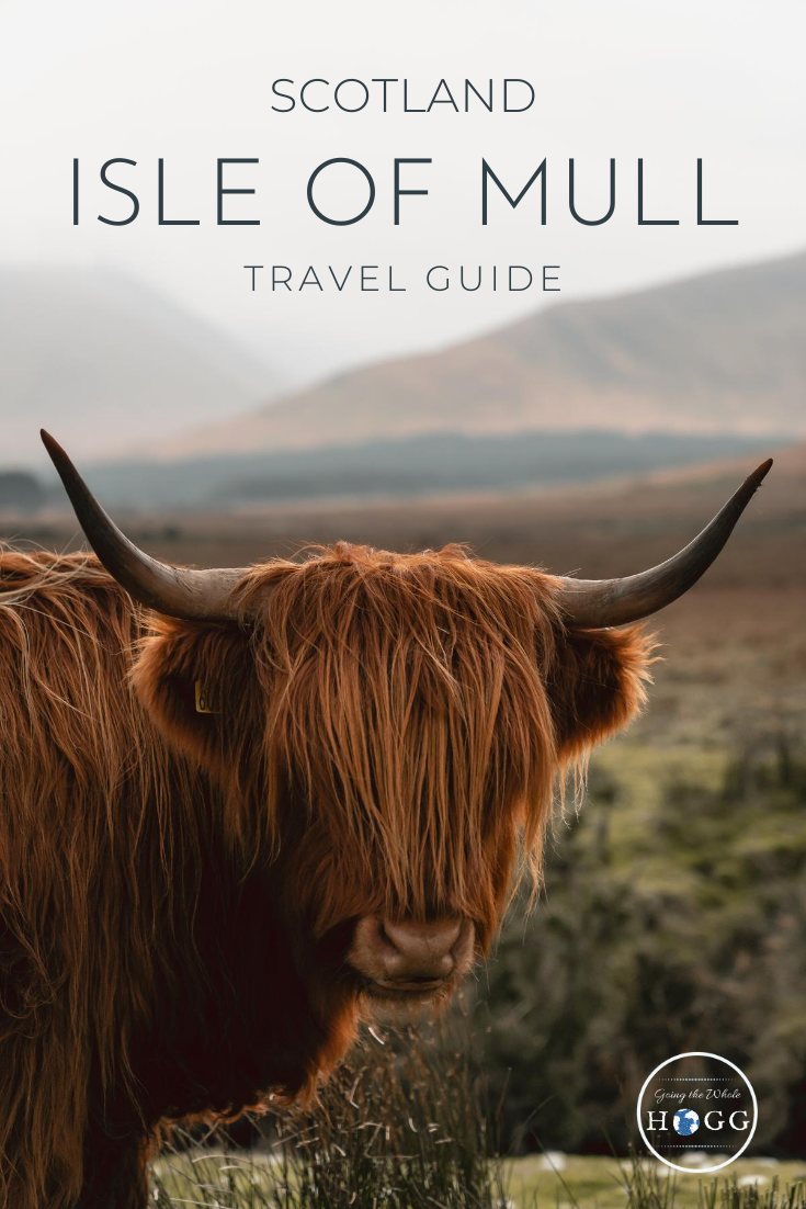9 Things To Do On The Isle Of Mull