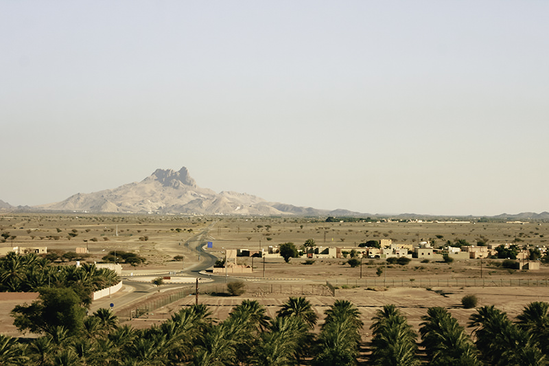 A view over date palms, a village, dusty brown land and a distant mountain from Jabrin Fort in Oman, seen as part of a !0 day itinerary in the country