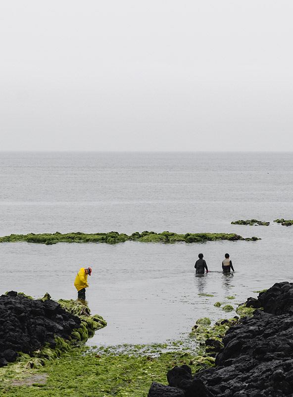 Two elderly Jeju haenyeo, or female free divers, wade through the water near the shore