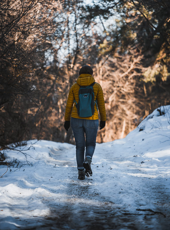 A person walks along the snowy forested trail from