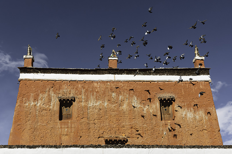 Birds flocking around the rooftop of bright red Jampa Gompa in Lo Manthang