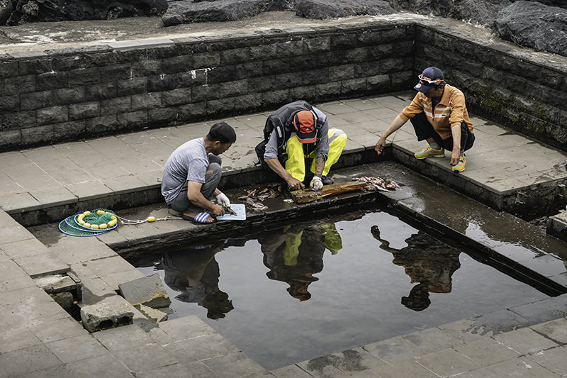 Local men preparing fish around a small man made outdoor pool at Beophwan Port on Jeju Island