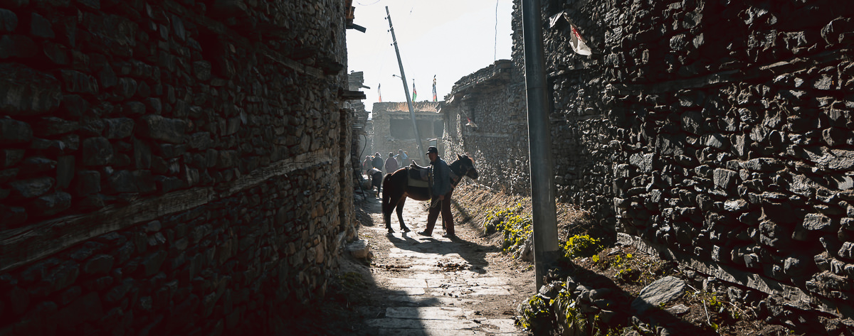 A local man and horse in a sunlit backstreet of Manang on the Annapurna Circuit
