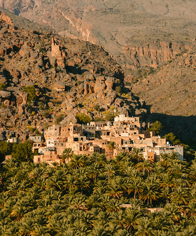 The mountain village of Misfat Al Abriyeen, sandy coloured mudbrick houses piled on top of each other, tumbling down the dry mountainside, skirted by a date palm plantation