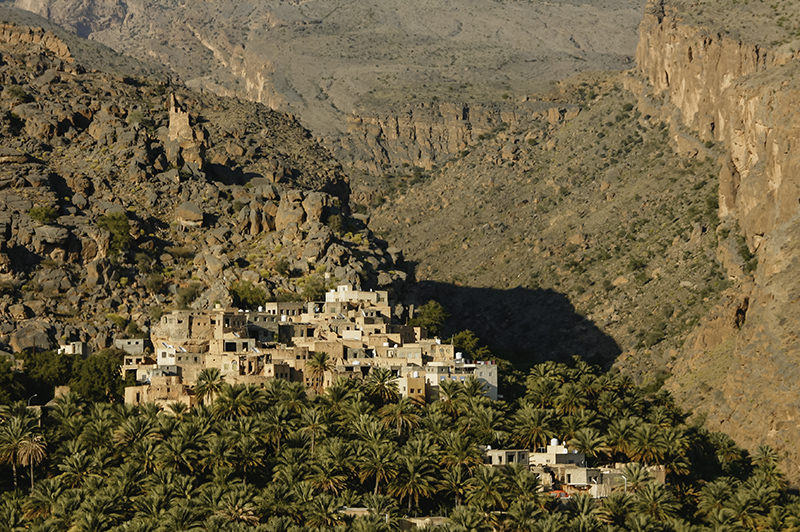 View of traditional mountain village, Misfat Al Abriyeen, in Oman. Mud brick houses descend the hillside skirted by date palms.