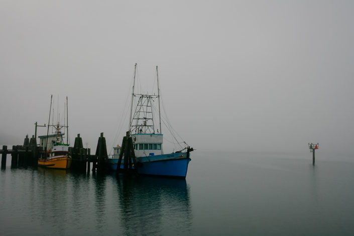 A photographic journey: Boats moored in a misty harbour at Bodega Bay, California, USA