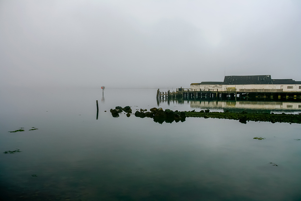 A photographic journey: Misty Morning at Bodega Bay, California, USA