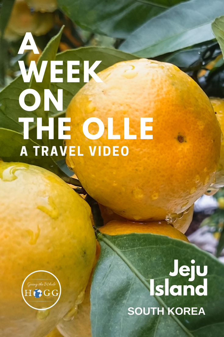 A video journey along Jeju Island\'s Olle Trail, South Korea. The Olle Trail is a 422 km network of walking trails encircling the island. If you enjoy slowing down, this is one of the best things to do in Jeju Island. For one day or a whole month, it\'s the perfect way to explore the island\'s stunning beaches, volcanoes, dense forests, traditional villages & relaxed pace of life. | Camping Korea | Hiking Korea | East Asia Travel | Long Distance Walking #hiking #travelvideo
