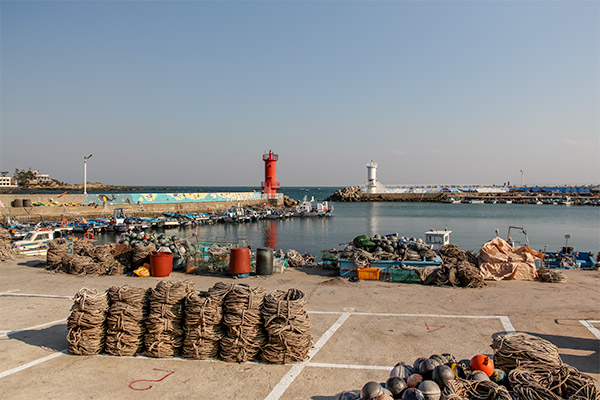 Busan City Guide: A fishing harbour on the coastal walk from Haedong Yonggunsa Temple to Songjeong Beach
