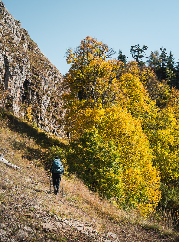 A hiker passes below cliffs and near trees with bright yellow leaves on Day 2 of the Panorama Trail in Borjomi-Kharagauli National Park