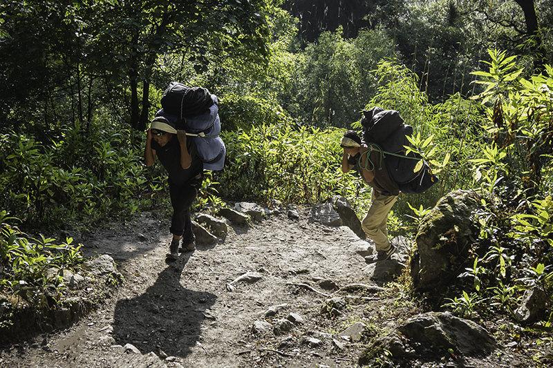 Two heavily laden porters climbing a sun dappled forest trail on the Manaslu Circuit Trek