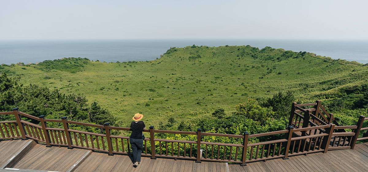 A person leaning on a wooden railing looking out over the lush green crater of Seongsan Ilchulbong on Jeju, while walking the Olle Trail