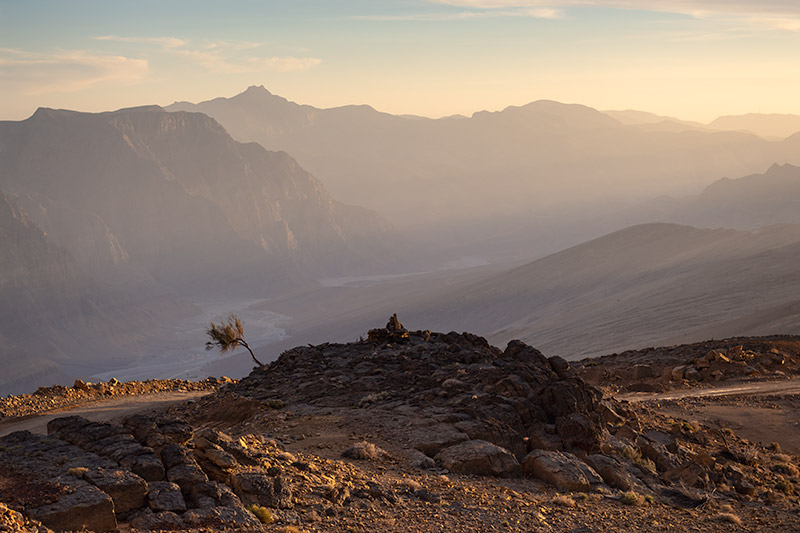 Soft sunset tones at Wadi Bih in Oman. A small solitary tree stands proudly in the rocks with layered mountains in the background.