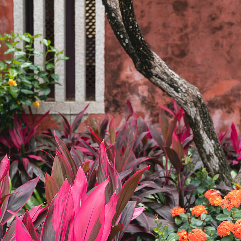 Plants and flowers line the back of the Tainan Confucius Temple complex wall