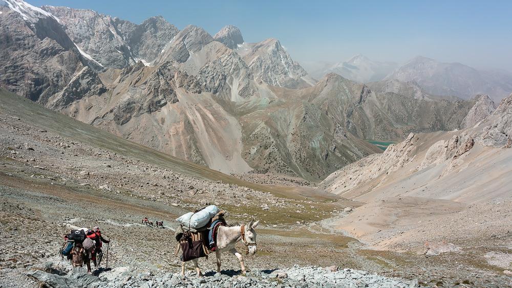 Pack donkeys climbing towards Alauddin Pass in the Fann Mountains of Tajikistan.