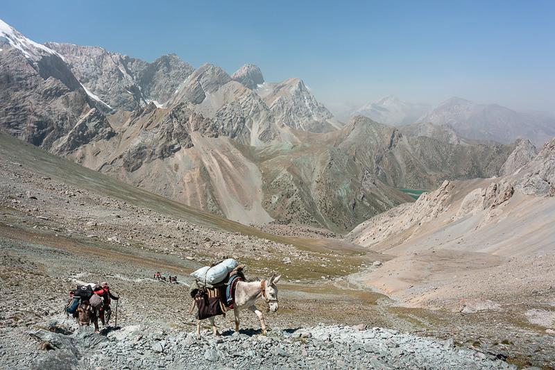 Pack donkeys climbing towards Alauddin Pass in the Fann Mountains of Tajikistan