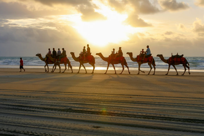 Western Australia Road Trip: The Ships of the Desert, Cable Beach, Broome