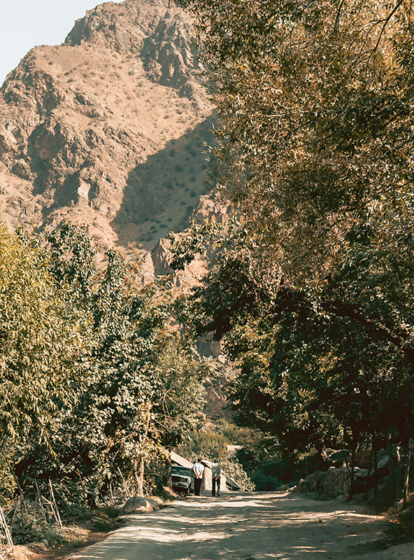 Two local men wander along a sun-dappled dirt road in a Pamir Highway village in Tajikistan, surrounded by tall leafy trees with a massive sandy mountain rising in front of them