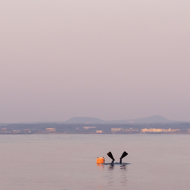 A haenyeo's fins and orange buoy are visible above the water as she duck dives at dawn on Udo Island, South Korea
