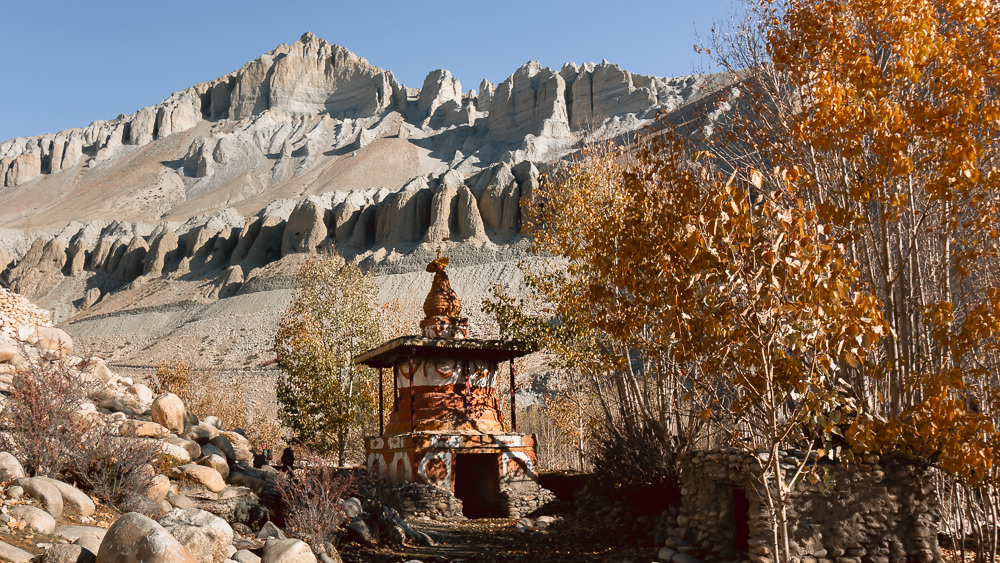 Yellow autumn leaves and an orange and white chorten next to the Tsarang Khola in Upper Mustang