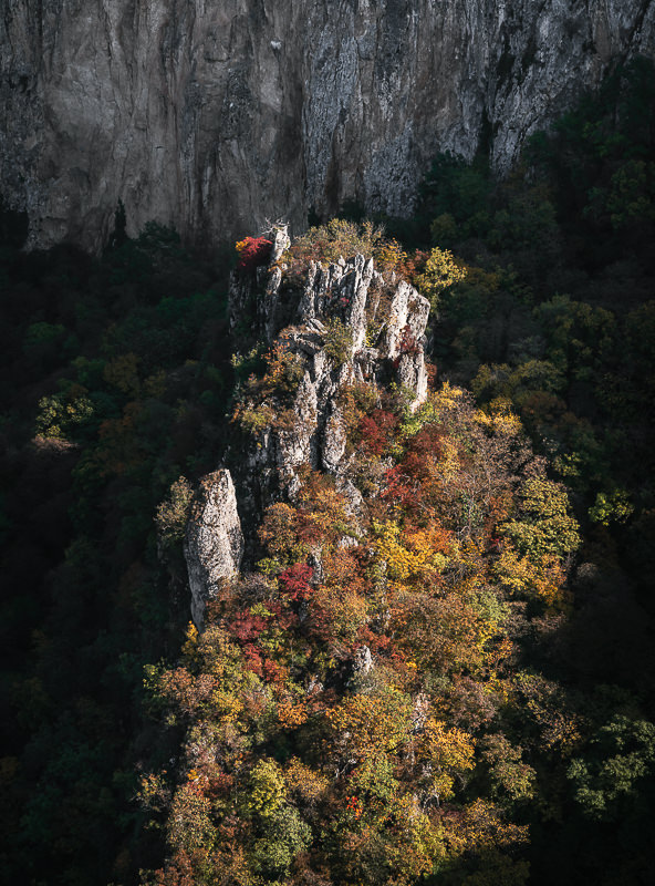 A jagged limestone karst, covered in autumnal trees, rises from inside Eagle Gorge in Vashlovani National Park, Georgia